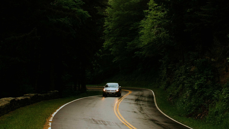 Chauffeur image